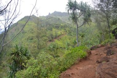 Hanakapiai Falls Trail