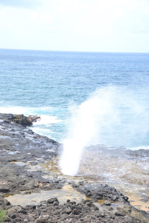 Spouting Horn.