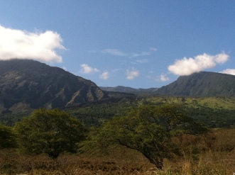 Along the Pi'ilani Highway