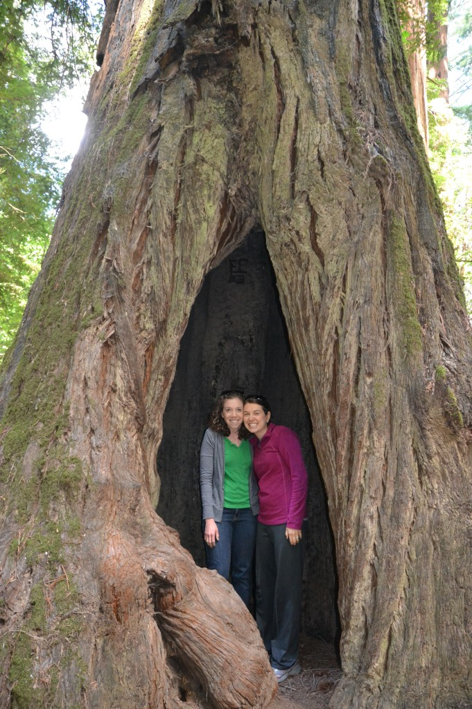 Sarah and Melody in a Redwood!