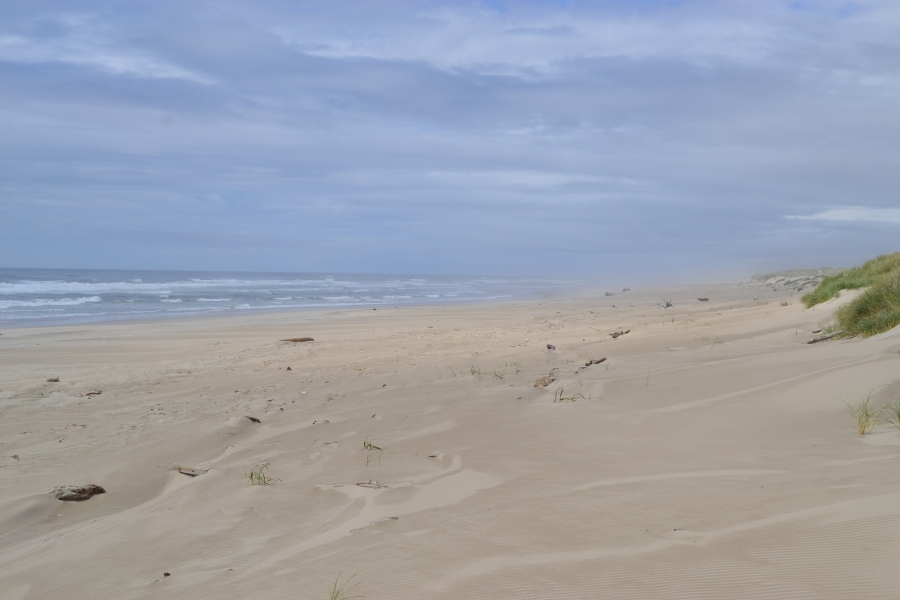 Beach at the Sand Dunes Recreation Area