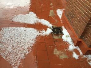 The hail @ Las Ventas