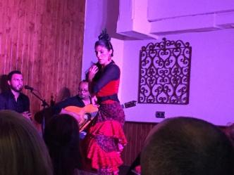 Flamenco Show!