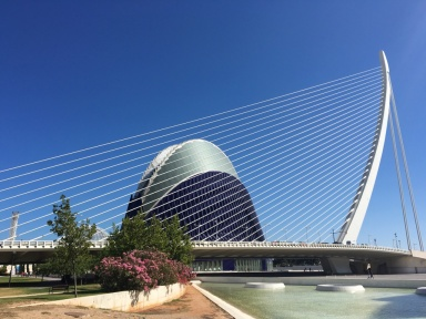 Bridge near the city of arts and sciences